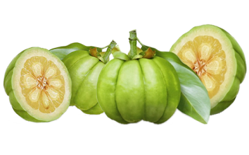 How Garcinia Cambogia and Saffron Can Help You Lose Weight and Belly Fat