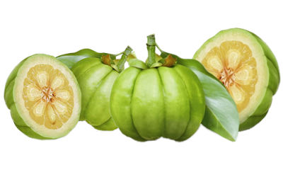 How Garcinia Cambogia And Saffron Can Help You Lose Weight And