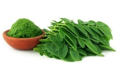 Moringa Oleifera - Great superfood, science based health benefits which lasts longer