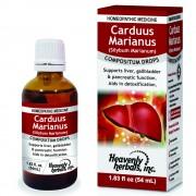 Carduus Marianus Compositum Drops